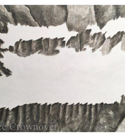 Bruce Crownover - 'Salamander Glacier Study'