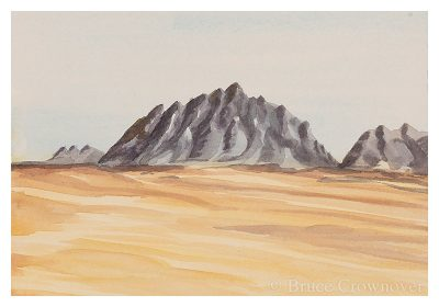Bruce Crownover Postcard - Armagosa Valley series